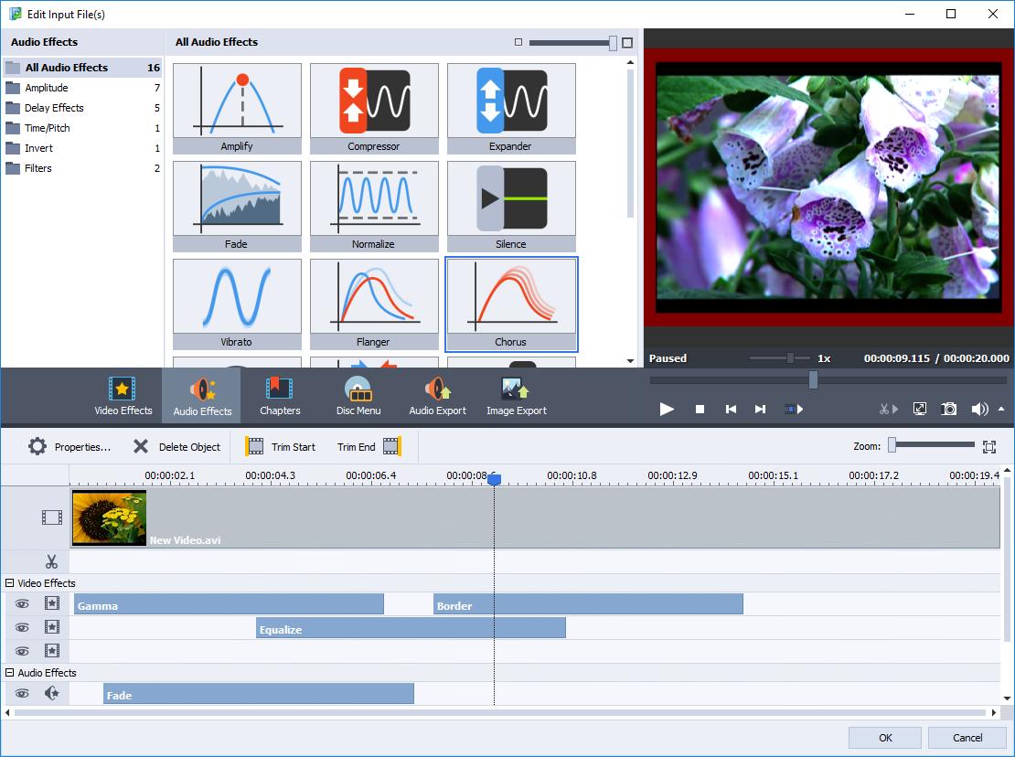 AVS Video Converter 10 Activation Key